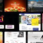Maximum - Multi-Purpose Responsive WordPress Themes